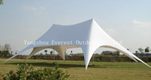 Hotsale White Star Tent with Best Price pictures & photos