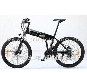 36V 8 Ah Li Battery Electric Bike