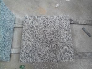 Cheap Granite Floor Tile for Building Construction