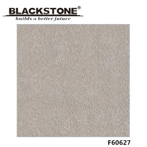 Decoration Material 600X600mm Glazed Rustic Porcelain Tile (F60628) pictures & photos