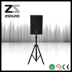 Zsound P12 12 Inch Professional Jazz Music Loudspeaker System Consultant pictures & photos