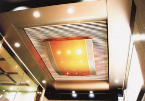 Aluminium Decorative Non-Standard Ceiling pictures & photos