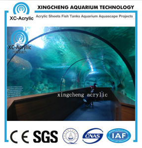 Customized Transparent UV PMMA Tunnel of Aquarium Factory pictures & photos