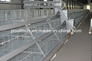 2016 Poultry Farm Battery Cage pictures & photos