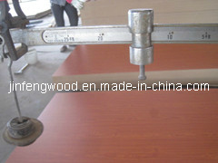 ISO9001: 2008 Furniture AAA Grade E2 Glue Wood Grain Color 100% Poplar From Chinacherry MDF pictures & photos