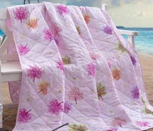 High Quality Kids Super Soft Summer Quilt. (T152) pictures & photos