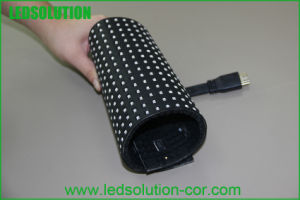 Indoor P10mm Flexible LED Module pictures & photos