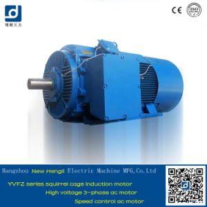 Yvfz Three Phase Induction AC Motor pictures & photos