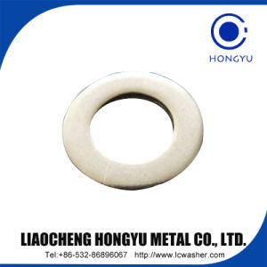 All Sizes Hot Sale Galvanized Bolt Flat Washer Brass Plain Washers pictures & photos
