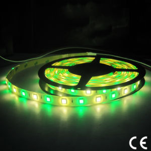 Waterproof High Quality LED Light Strip (3528/5050)