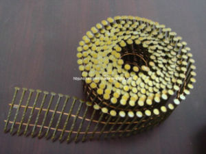 Screw Shank Coil Nails/Wire Coil Nail