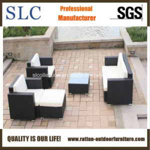 Rattan Garden Furniture Rattan Sofa (SC-B7016) pictures & photos