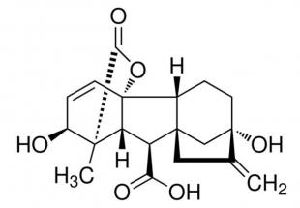 Gibberellic Acid pictures & photos