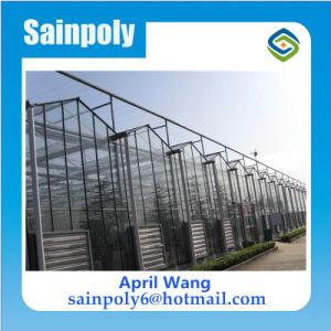 Low Price and Easily Installed Glass Multi-Span Venlo Greenhouse for Sale pictures & photos