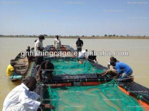 Aquaculture Tilapia Cage pictures & photos