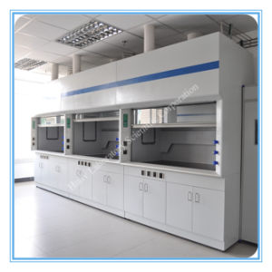 All Steel Structure Test Laboratory High Quality New Fume Hood pictures & photos