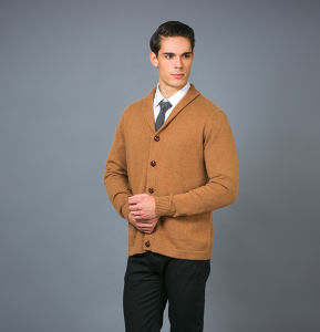 Men′s Fashion Cashmere Sweater 17brpv081 pictures & photos