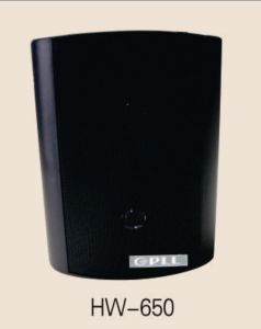Wall Mounted Commercial Speaker Professional Power Speaker Box