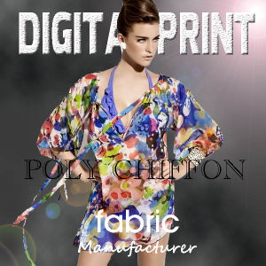 Digital Print on Poly Chiffon Fabric (X1075) pictures & photos