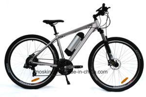 2015 New Model with Panasonic Man E Bike (TDE12Z)
