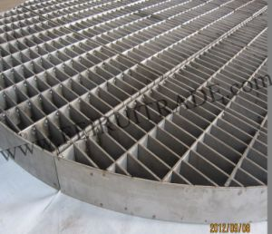 Hold-Down Grating Form China pictures & photos
