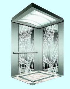 Passenger Elevator (BMEV3.0)
