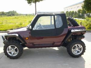 800CC 4*4 EEC Jeep & Go Kart pictures & photos