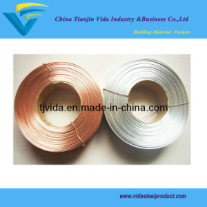 Copper Coated Flat Stitching Steel Wire pictures & photos