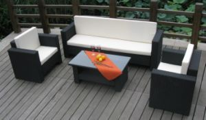 Garden/Outdoor Rattan Sofa Sets (CNS-A18)