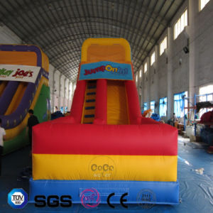 Coco Water Design Inflatable Color Slide LG9048 pictures & photos