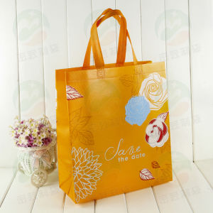Non Woven Bag with 20kg Holding Customised Print (My-028) pictures & photos