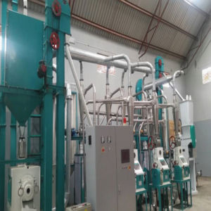 Nigeria Commercial 30t Maize Flour Mill Machinery Complete Processing Line pictures & photos