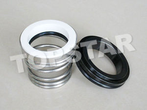Mechanical Seals (TP 155)