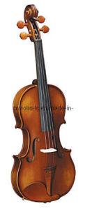 Popular Violin (LCV012B)