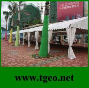Promotion Tent (TGEO2259)