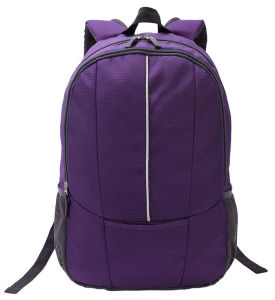 Nylon Bag for 15.6 Inch Laptop with High Quality (SB6284) pictures & photos
