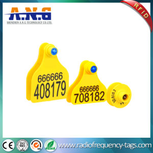 Professional Supplier of RFID Ear Tag pictures & photos