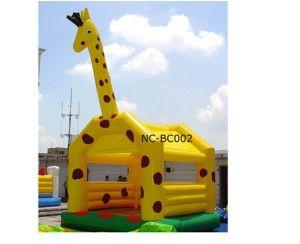 Amusement Park Bounce House (NC-API001) pictures & photos