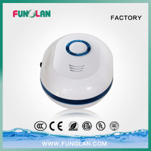 Ozone Generator Price Cold Corona Discharge with Ce Certificate