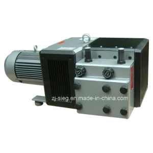 Dry Rotary Vane Vacuum Pump and Compressor for Tinplate Printing Machine pictures & photos