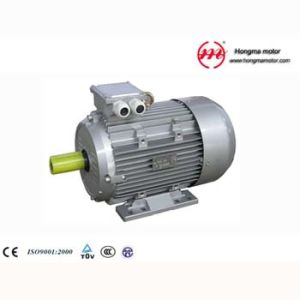 1hma Motor/Hm Series Three-Phase Asynchronous Motor with Ie1 pictures & photos