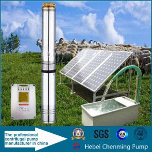 DC Deep Well Solar Pumps for Cattle Watering pictures & photos
