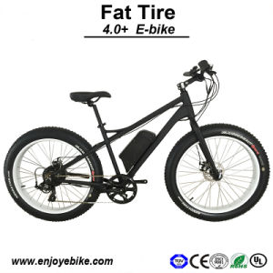500W Big Tire Fat Tire Electric Bike Bicycle E-Bicycle E-Bike (PE-TDE12Z)