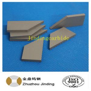 Tungsten Carbide for Agro pictures & photos