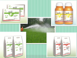 Pest Insect Moth Bollworm Boll Grandis Insecticide Pyriproxyfen Insect Spray pictures & photos