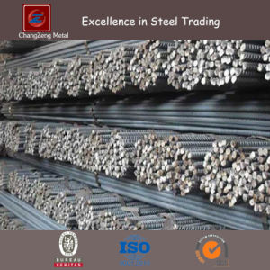 Deformed Steel Rebars in Reinforced Concrete (CZ-R49) pictures & photos