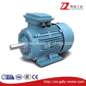 Ce Approved IEC Standard 3 Phase Asynchronous Induction Motor pictures & photos