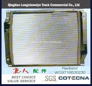 Full Range China Truck Parts HOWO Truck Parts -Radiator pictures & photos