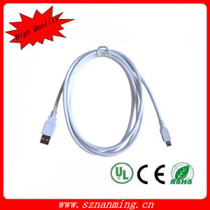USB 2.0 5 Pin Mini B Male to a Male Data Power Cable pictures & photos