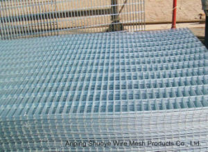 Galvanized Steel Welded Wire Mesh Panel or in Roll pictures & photos